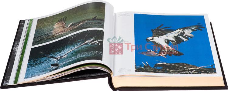 Книга «Охота» Elite Book 520(з), фото 7